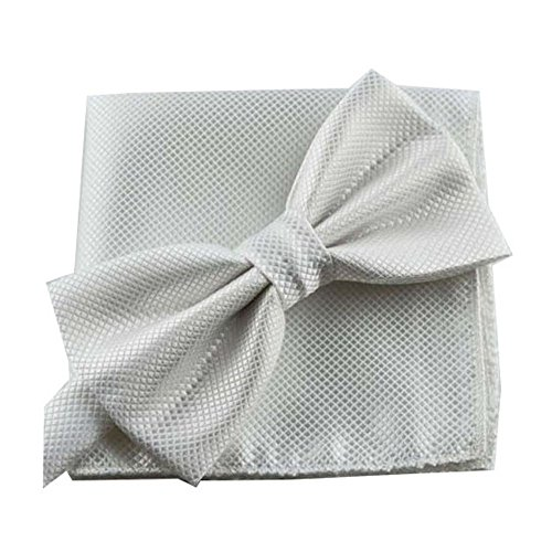 Fliege Set Einstecktuch Hochzeit (Weiß)