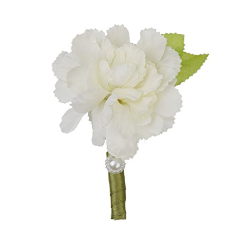 Smoking Ansteckblume, Weiß