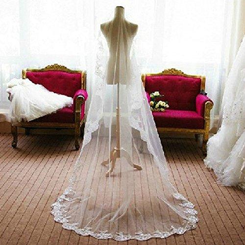 TinkSky Mode Hochzeitsschleier Mantilla (weiß) mit 2,6 M lange monistischer Stickerei Spitze