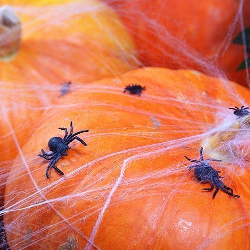 Tischdeko Spinnen Halloween (10 Stück)