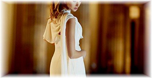 Chiffon Stola Chiffonschal perfekt zu jedem Brautkleid - Abendkleid, Hochzeit Abend Gala Empfang - RUTSCHT NICHT - CREME (helles Elfenbein, Ivory, Sektfarben) - ca. 245cm lang, One size - 3